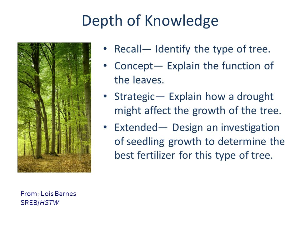Depth of Knowledge Recall— Identify the type of tree. Concept— Explain the function of the leaves. Strategic— Explain how a drought might affect the g