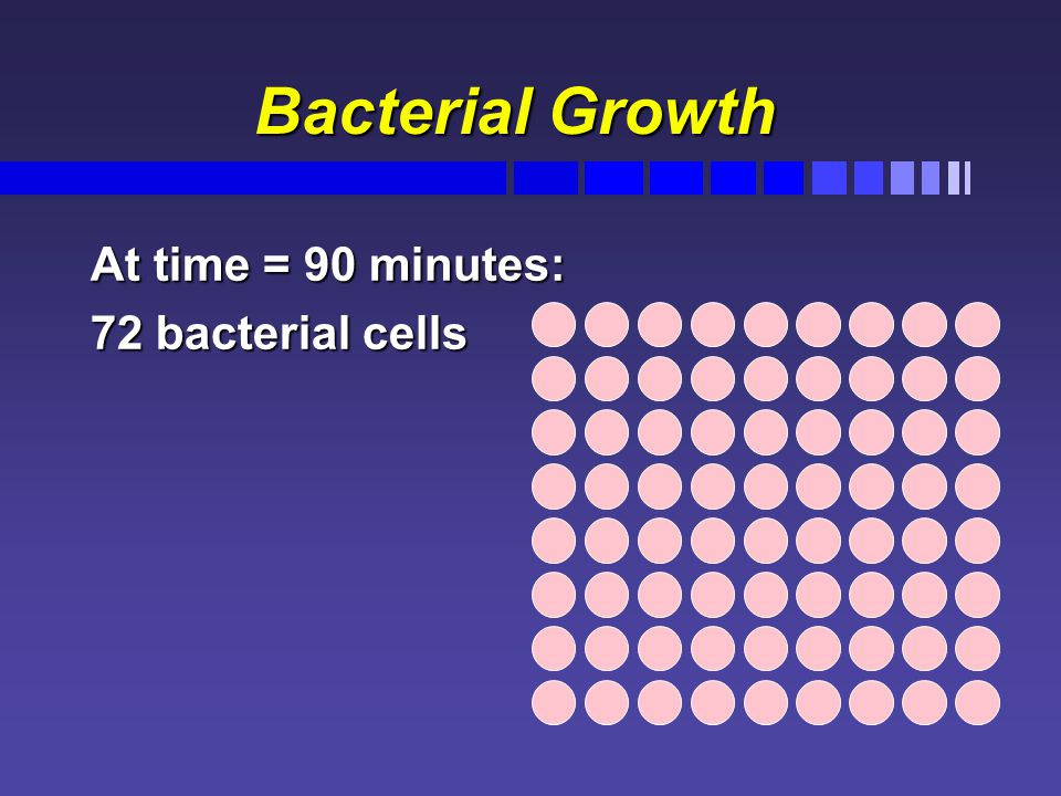 Bacterial Growth Bacterial Growth At time = 90 minutes: 72 bacterial cells