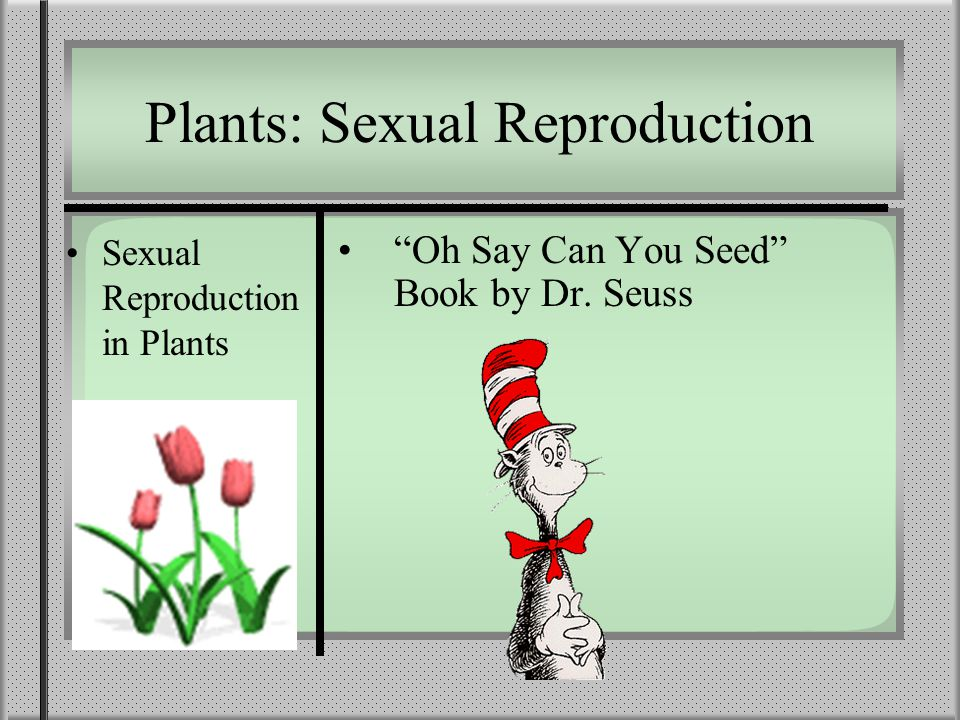 Plants: Sexual Reproduction Sexual Reproduction in Plants Oh Say Can You Seed Book by Dr. Seuss