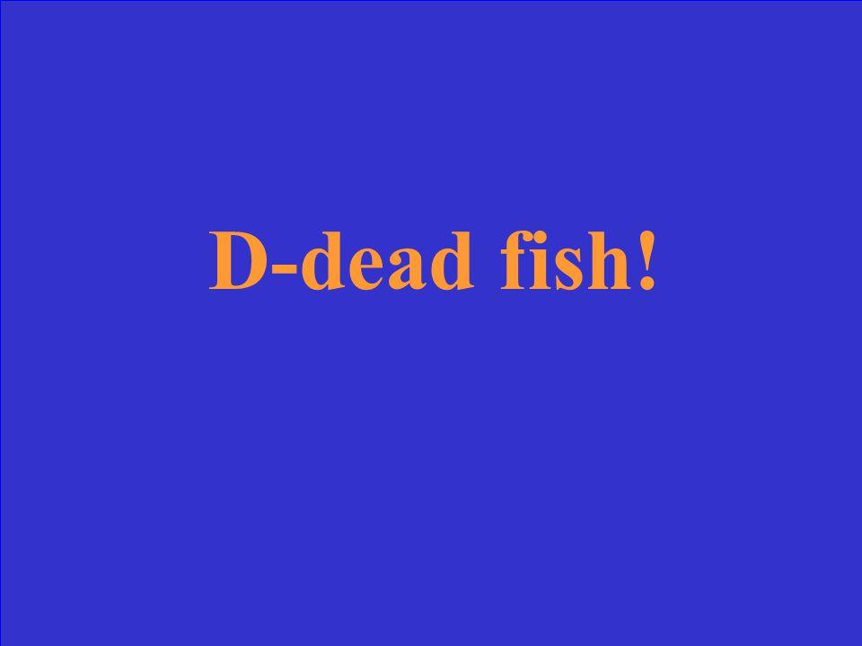 D-dead fish!