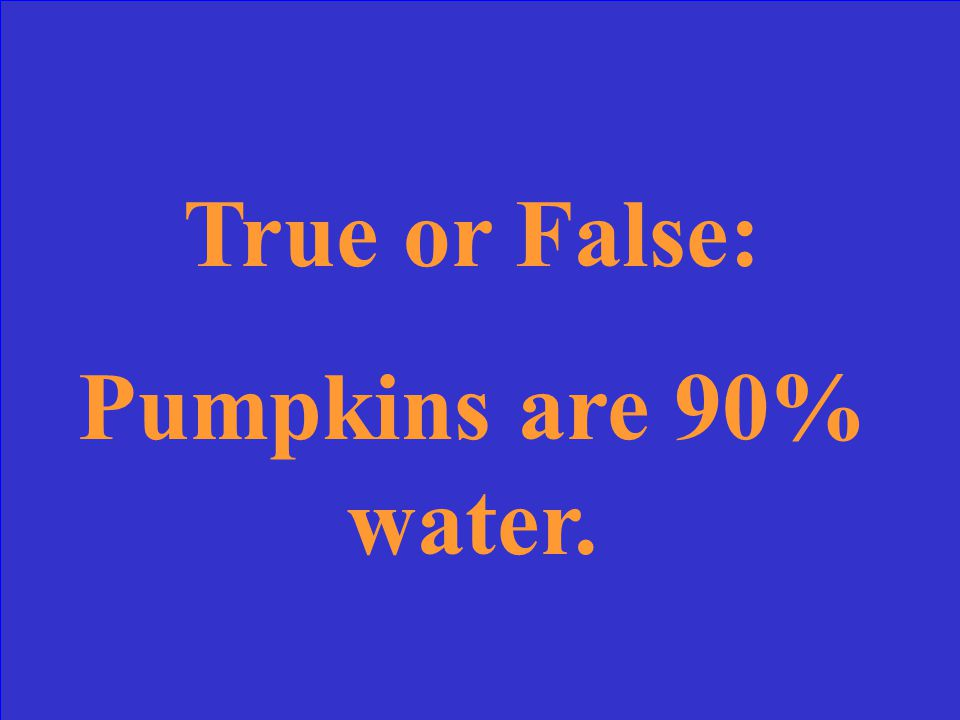 True or False: Pumpkins are 90% water.