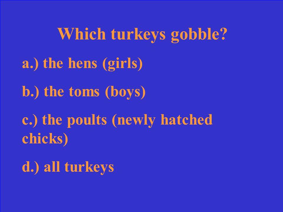 Which turkeys gobble.