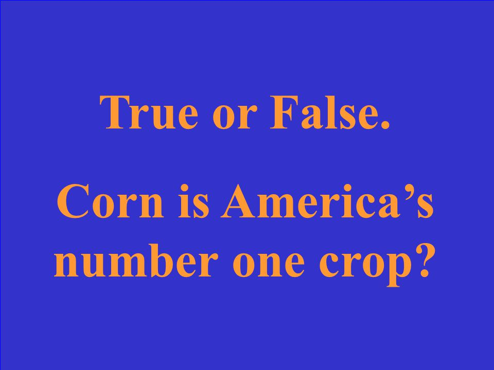 True or False. Corn is America's number one crop?