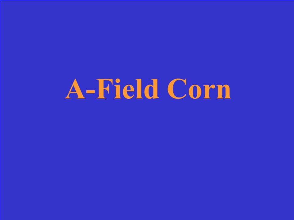 What type of corn is mostly grown in Illinois? a.) Field Corn b.) Indian Corn c.) Sweet Corn d.) Popcorn