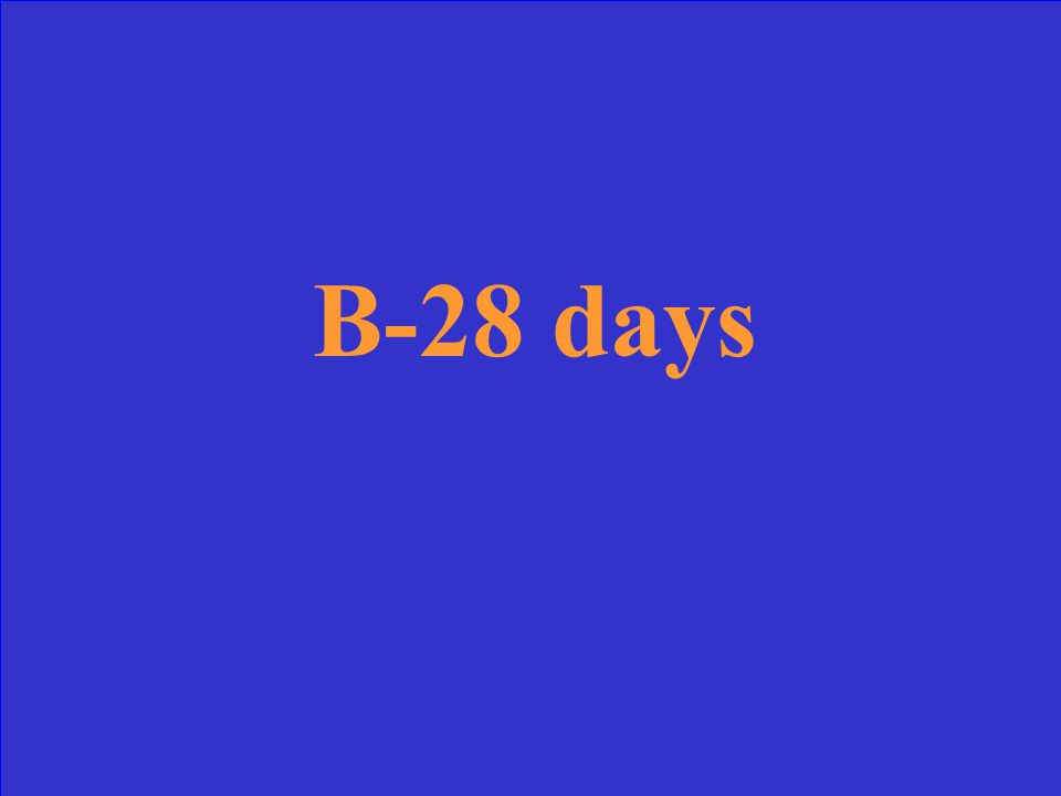 B-28 days