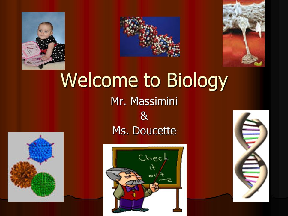 Welcome to Biology Mr. Massimini & Ms. Doucette