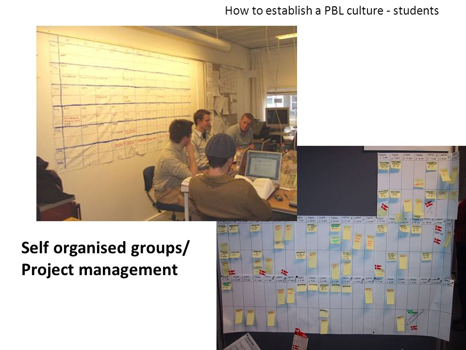19 Self organised groups/ Project management How to establish a PBL culture - students