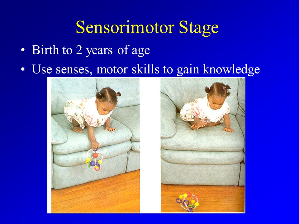 Sensorimotor Stage Birth to 2 years of age Use senses, motor skills to gain knowledge