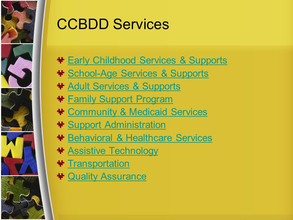 CCBDD Services Early Childhood Services & Supports School-Age Services & Supports Adult Services & Supports Family Support Program Community & Medicaid Services Support Administration Behavioral & Healthcare Services Assistive Technology Transportation Quality Assurance