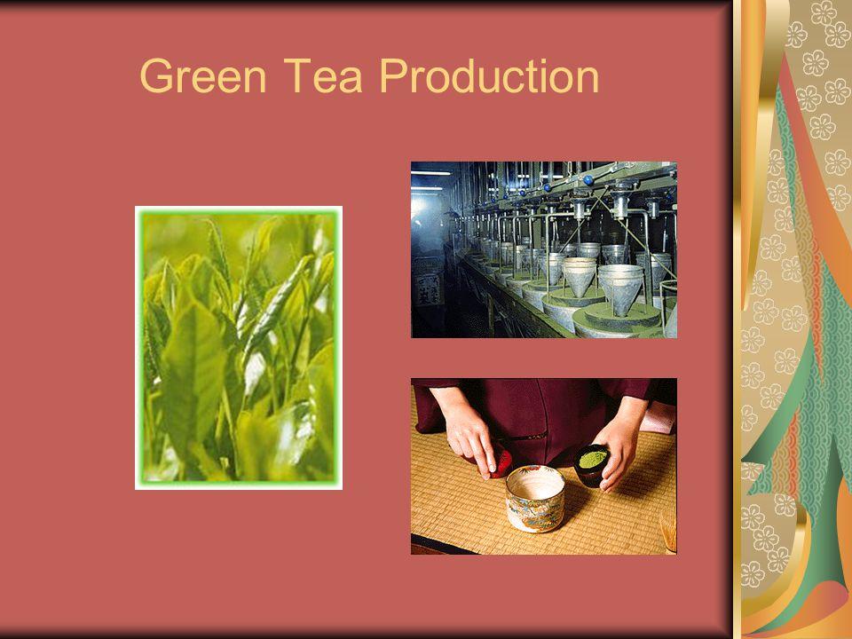 Green Tea Production