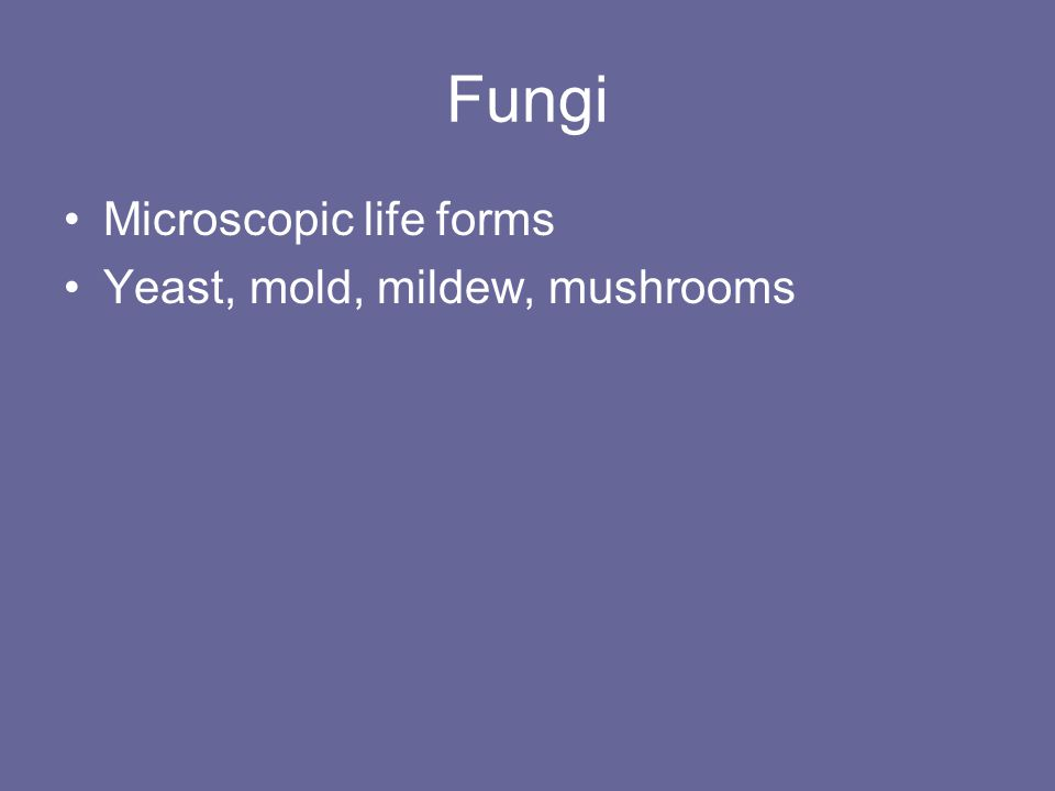 Fungi Microscopic life forms Yeast, mold, mildew, mushrooms