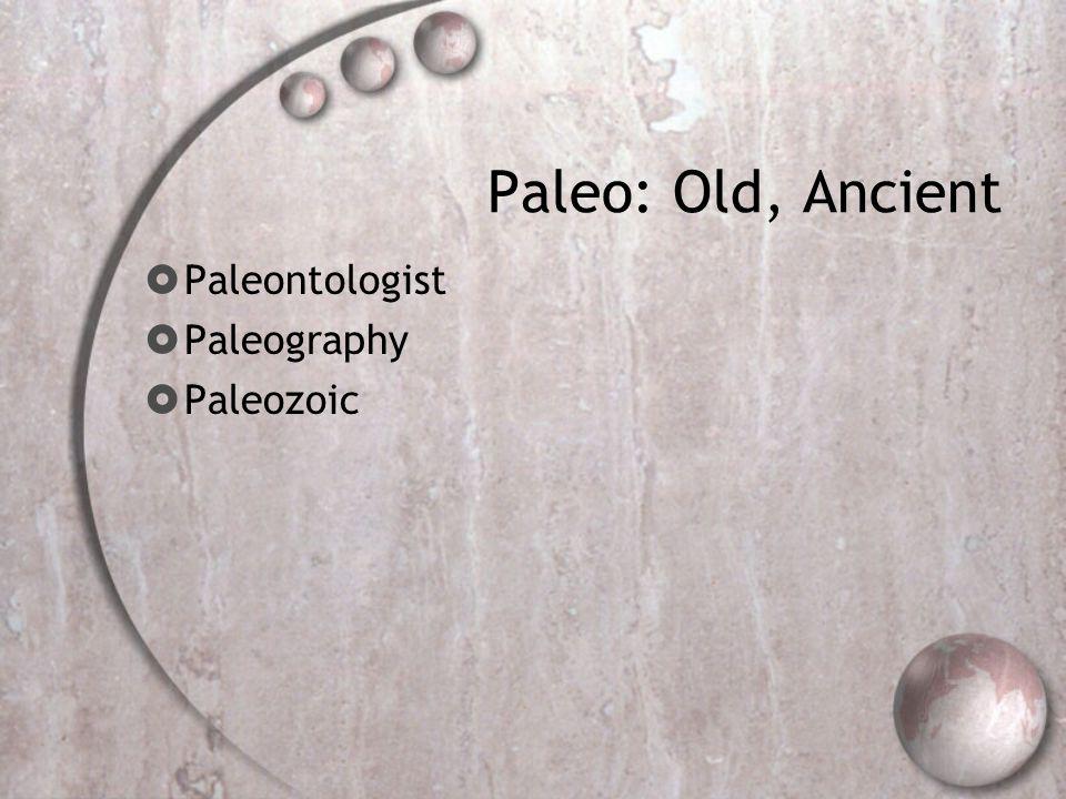 Paleo: Old, Ancient  Paleontologist  Paleography  Paleozoic