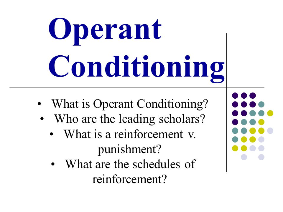 Operant Conditioning Activity: Positive Reinforcement Get in groups of three.