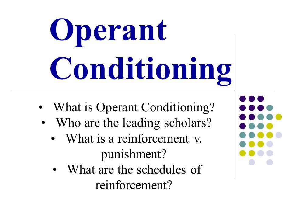 Operant Conditioning Computer Lab & Activities PsychSim Operant Conditioning Maze Lab