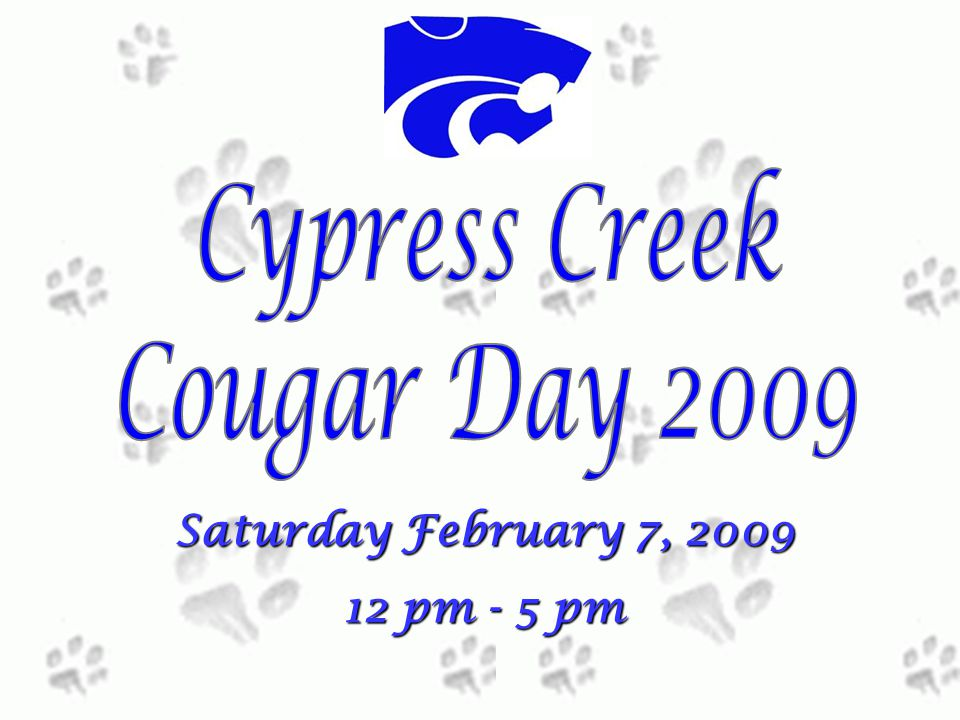 Saturday February 7, 2009 12 pm - 5 pm