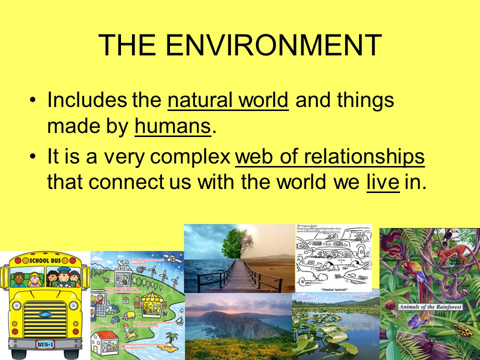 Environmental Problems occur on different scales: local, regional, or global.