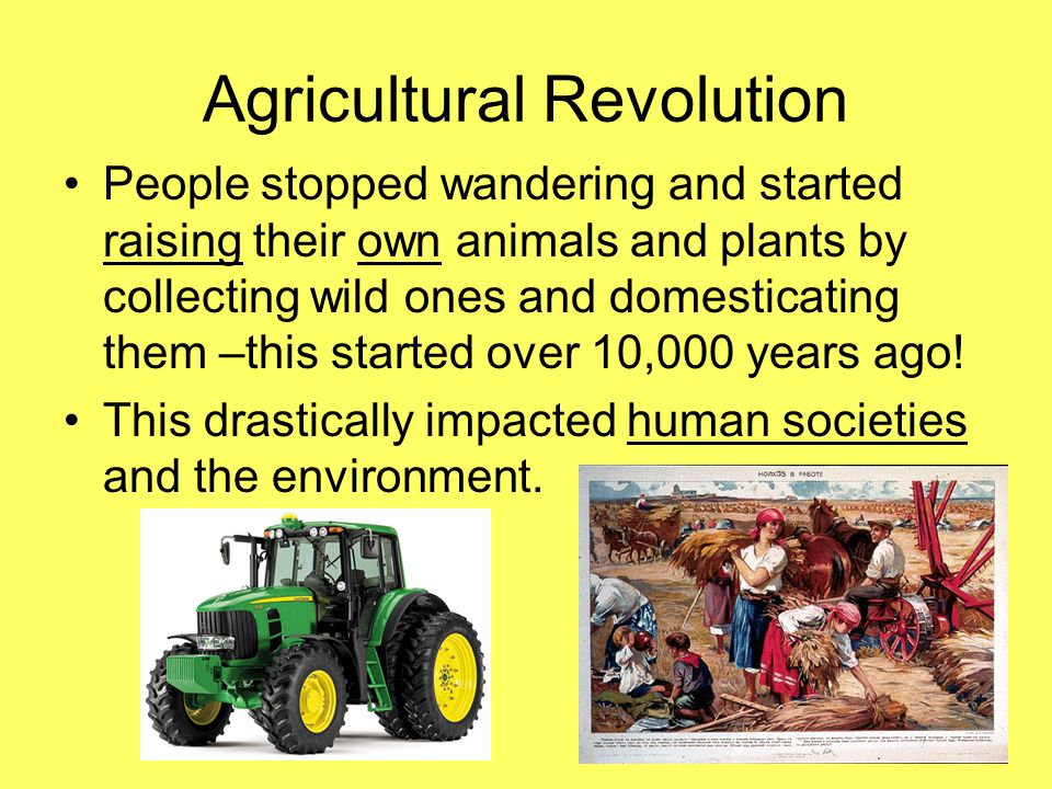 Agricultural Revolution People stopped wandering and started raising their own animals and plants by collecting wild ones and domesticating them –this started over 10,000 years ago.