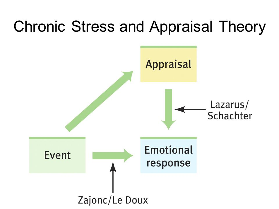 Chronic Stress and Appraisal Theory
