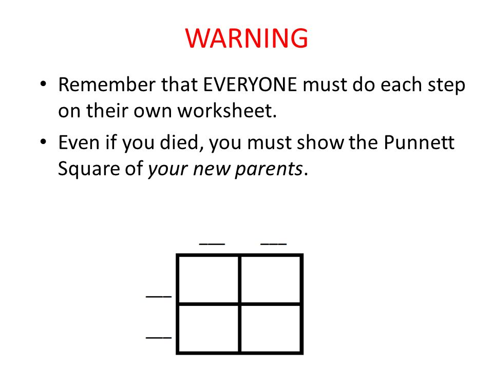 WARNING Remember that EVERYONE must do each step on their own worksheet. Even if you died, you must show the Punnett Square of your new parents.