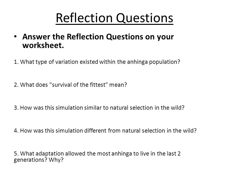Reflection Questions Answer the Reflection Questions on your worksheet. 1. What type of variation existed within the anhinga population? 2. What does