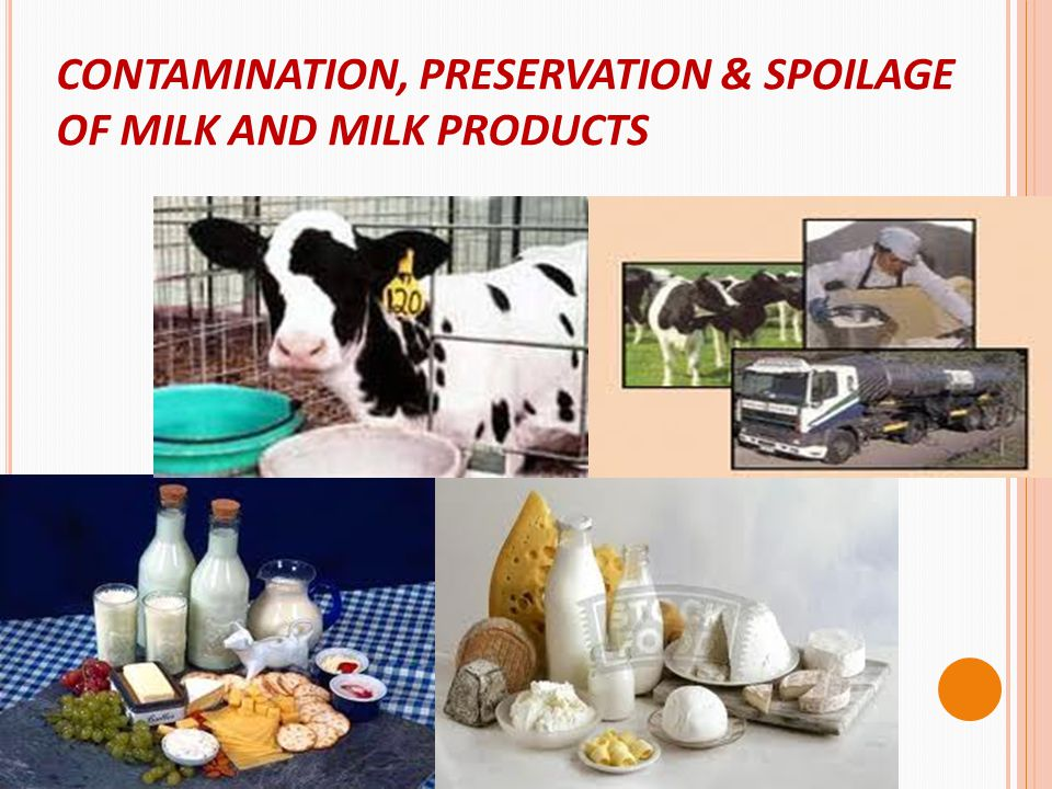 PRESERVATION Milk is such a delicately flavored, easily changed food.