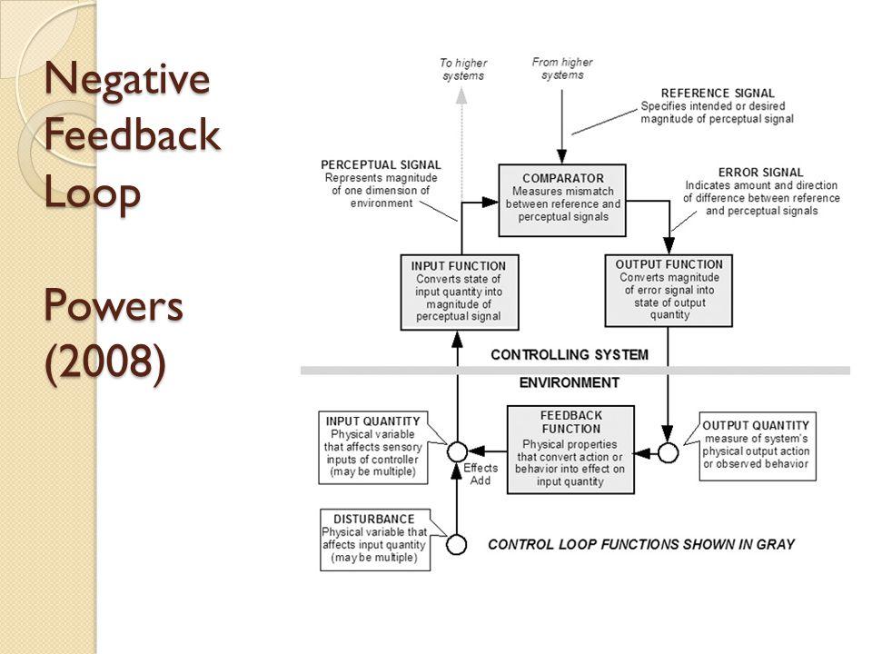 Negative Feedback Loop Powers (2008)