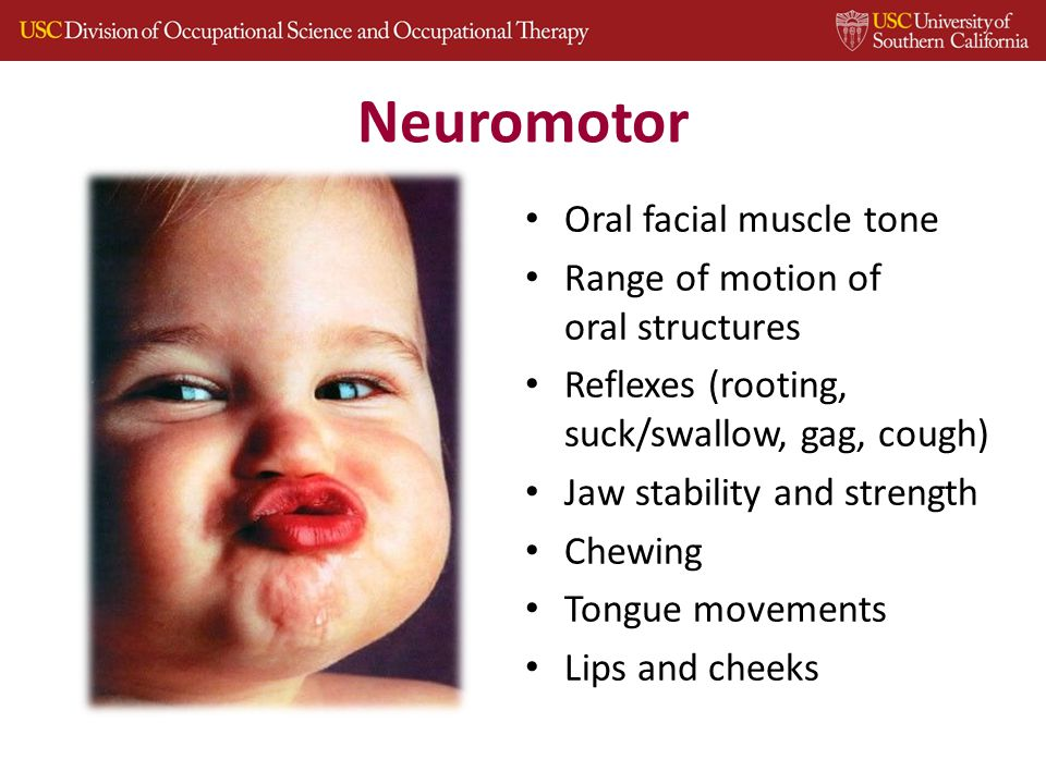 Neuromotor Oral facial muscle tone Range of motion of oral structures Reflexes (rooting, suck/swallow, gag, cough) Jaw stability and strength Chewing Tongue movements Lips and cheeks