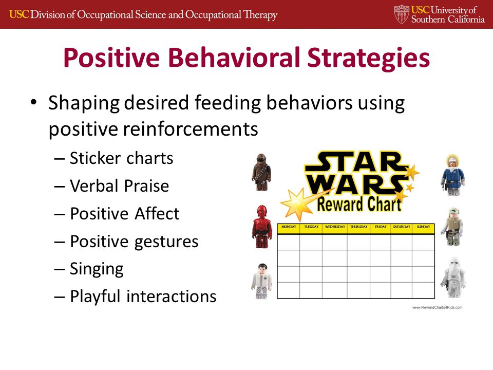 Positive Behavioral Strategies Shaping desired feeding behaviors using positive reinforcements – Sticker charts – Verbal Praise – Positive Affect – Positive gestures – Singing – Playful interactions