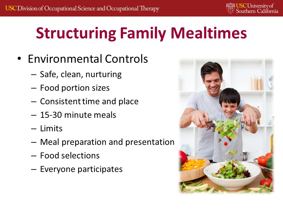 Structuring Family Mealtimes Environmental Controls – Safe, clean, nurturing – Food portion sizes – Consistent time and place – 15-30 minute meals – Limits – Meal preparation and presentation – Food selections – Everyone participates