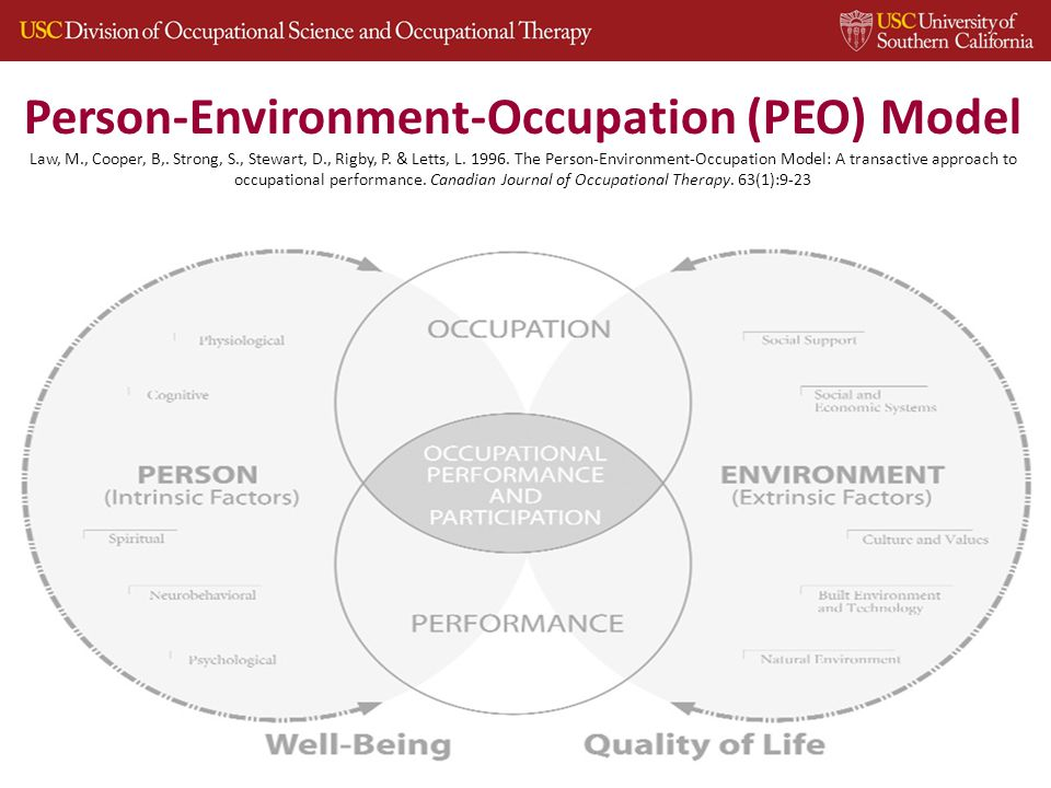 Person-Environment-Occupation (PEO) Model Law, M., Cooper, B,.