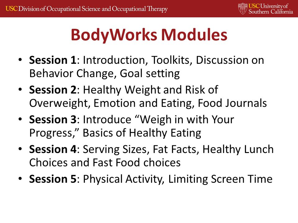 BodyWorks Modules Session 1: Introduction, Toolkits, Discussion on Behavior Change, Goal setting Session 2: Healthy Weight and Risk of Overweight, Emotion and Eating, Food Journals Session 3: Introduce Weigh in with Your Progress, Basics of Healthy Eating Session 4: Serving Sizes, Fat Facts, Healthy Lunch Choices and Fast Food choices Session 5: Physical Activity, Limiting Screen Time