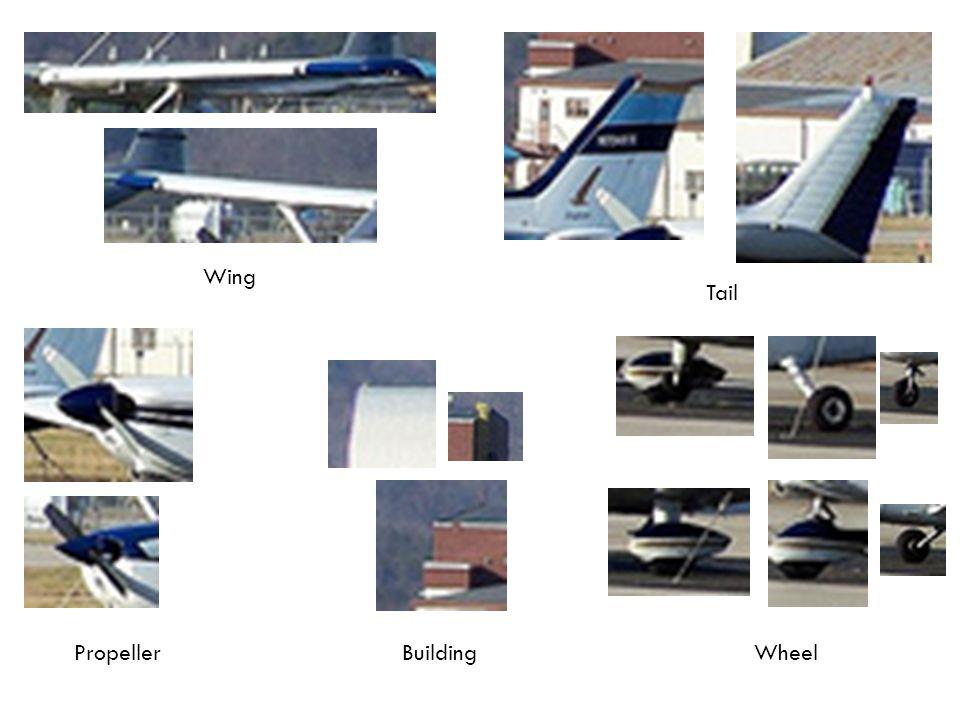 Wing Tail WheelBuildingPropeller