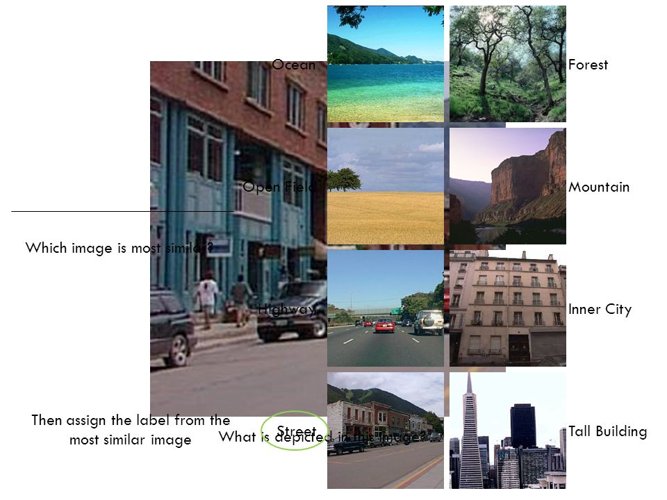 Ocean Open Field Highway Street Forest Mountain Inner City Tall Building What is depicted in this image? Which image is most similar? Then assign the