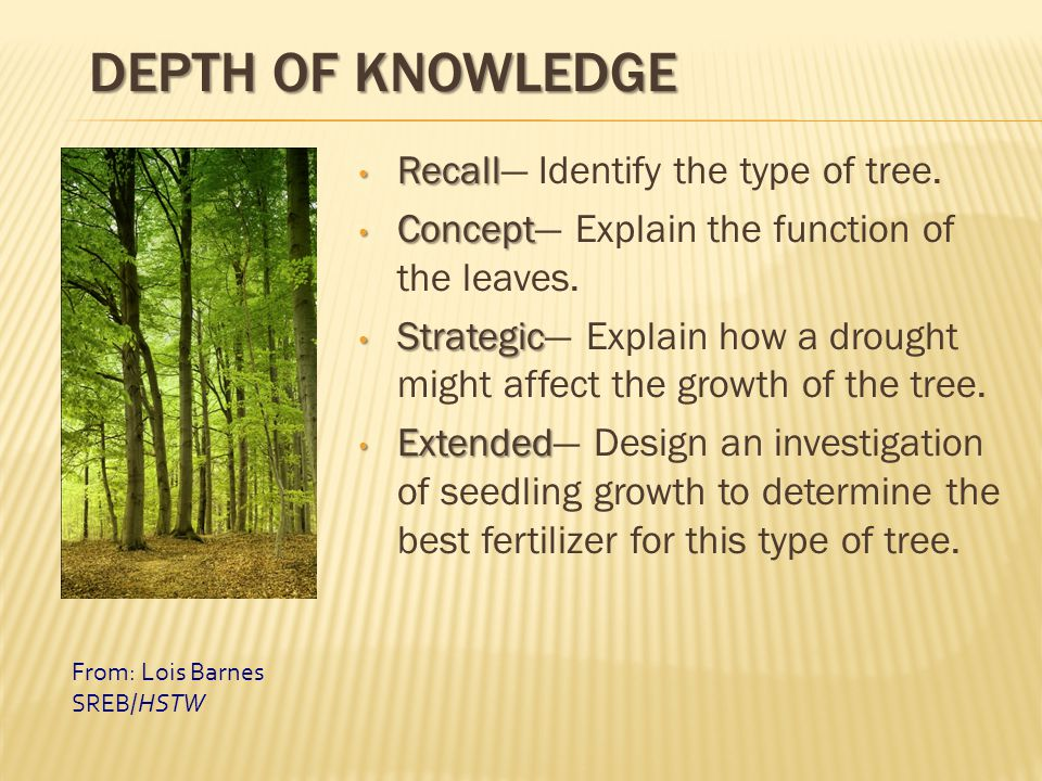 DEPTH OF KNOWLEDGE Recall Recall— Identify the type of tree. Concept Concept— Explain the function of the leaves. Strategic Strategic— Explain how a d