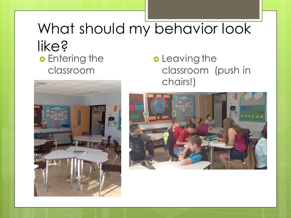 What should my behavior look like.