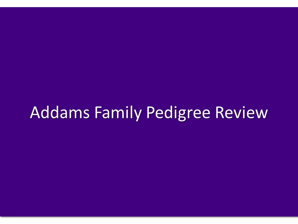 Addams Family Pedigree Review