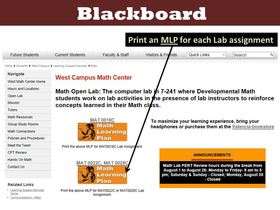 Blackboard Print an MLP for each Lab assignment