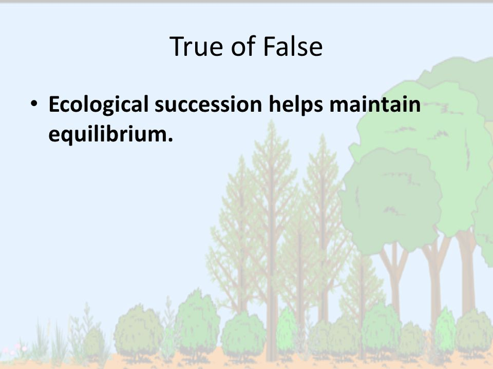 True of False Ecological succession helps maintain equilibrium.
