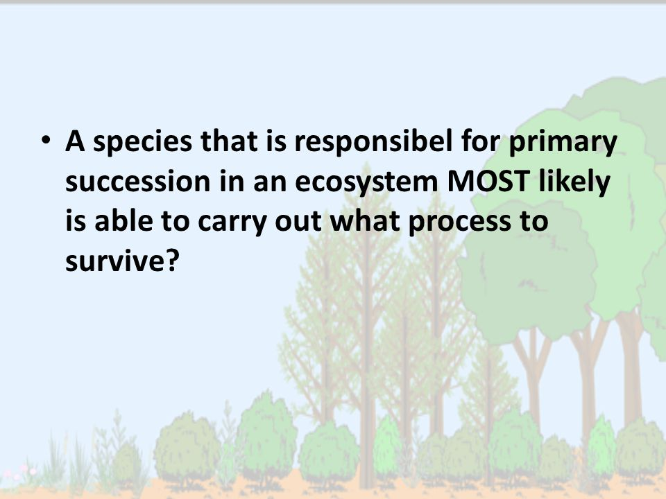 A species that is responsibel for primary succession in an ecosystem MOST likely is able to carry out what process to survive