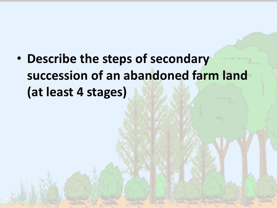 Describe the steps of secondary succession of an abandoned farm land (at least 4 stages)