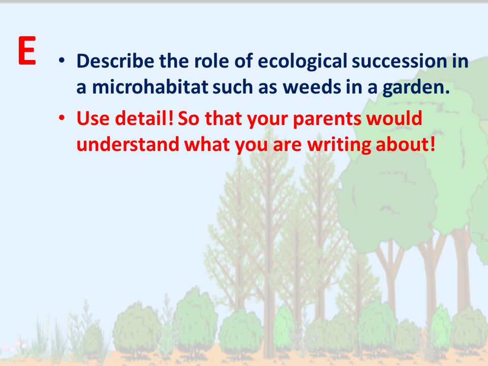 Describe the role of ecological succession in a microhabitat such as weeds in a garden. Use detail! So that your parents would understand what you are