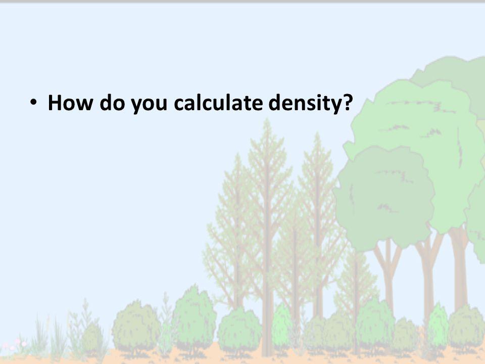 How do you calculate density