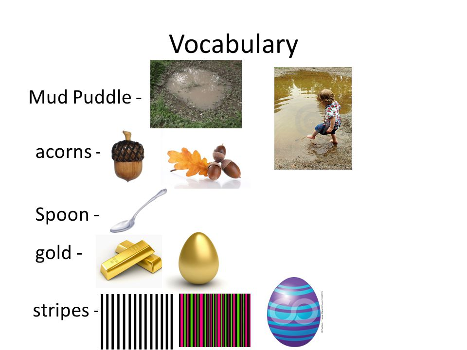 Vocabulary Mud Puddle - acorns - Spoon - gold - stripes -