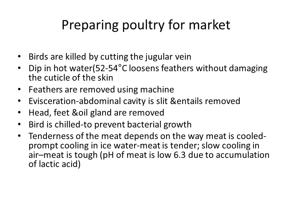 Preparing poultry for market Birds are killed by cutting the jugular vein Dip in hot water(52-54°C loosens feathers without damaging the cuticle of the skin Feathers are removed using machine Evisceration-abdominal cavity is slit &entails removed Head, feet &oil gland are removed Bird is chilled-to prevent bacterial growth Tenderness of the meat depends on the way meat is cooled- prompt cooling in ice water-meat is tender; slow cooling in air–meat is tough (pH of meat is low 6.3 due to accumulation of lactic acid)