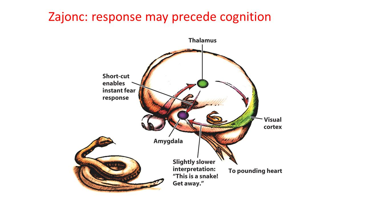 Zajonc: response may precede cognition