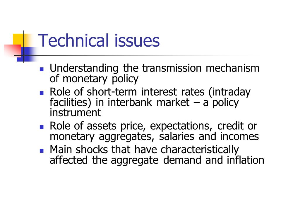 Technical issues Understanding the transmission mechanism of monetary policy Role of short-term interest rates (intraday facilities) in interbank market – a policy instrument Role of assets price, expectations, credit or monetary aggregates, salaries and incomes Main shocks that have characteristically affected the aggregate demand and inflation