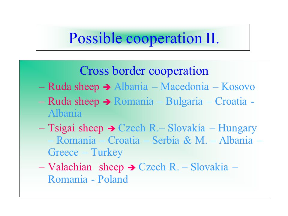 Possible cooperation II.