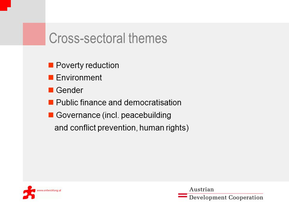 Cross-sectoral themes Poverty reduction Environment Gender Public finance and democratisation Governance (incl.