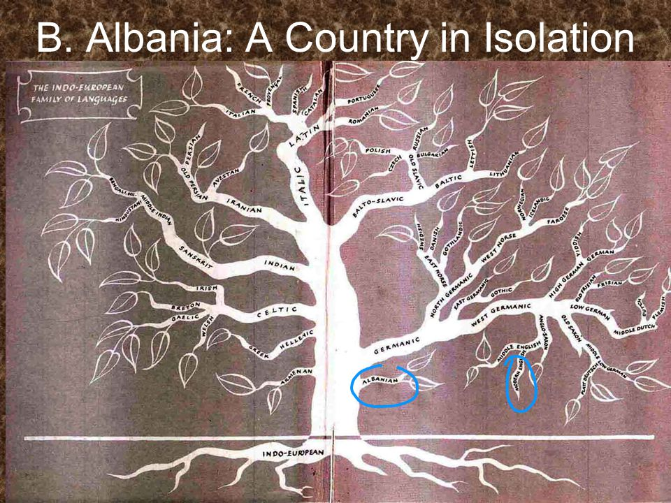 B. Albania: A Country in Isolation 1.What is the role of religion in Albania.