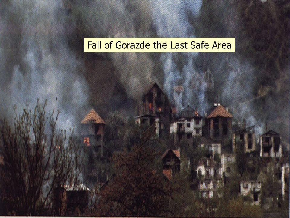 Fall of Gorazde the Last Safe Area